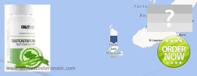 Hvor kan jeg købe Testosterone online Saint Pierre And Miquelon