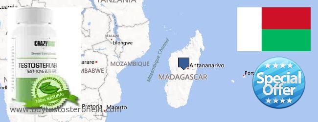 Where to Buy Testosterone online Madagascar